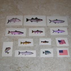 Pescado y calcomanías de la bandera