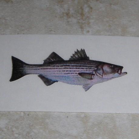 Рыба и флаг таблички