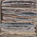 자작나무 껍질